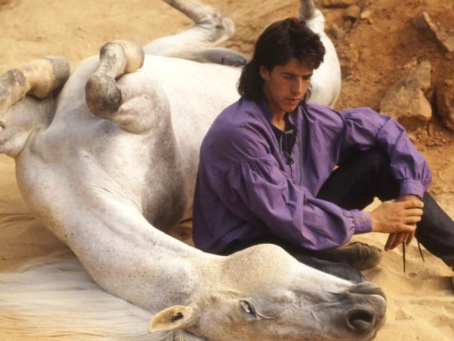 Gazelle - Jean-François Pignon